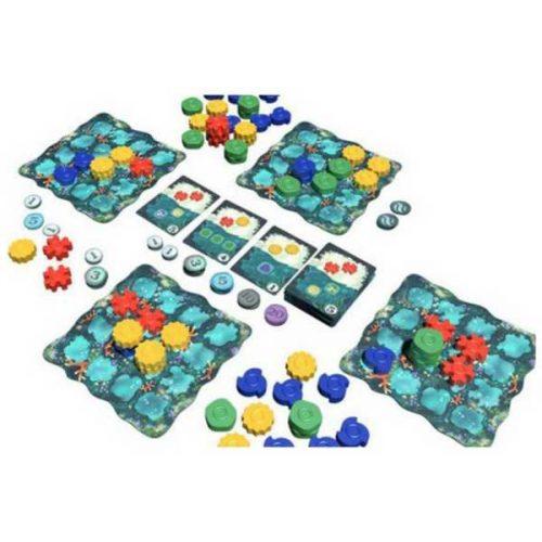 bordspellen-reef (1)