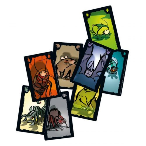 kaartspellen-kakkerlakkenpoker (1)