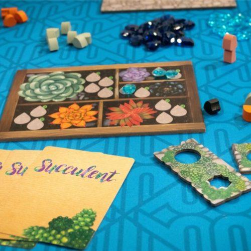 bordspellen-succulent (3)