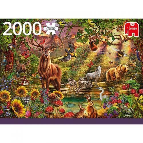 puzzels-jumbo-magische-bos-bij-zonsondergang-2000-stukjes (1)